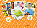 Child personal GalleryAdmin flash templates