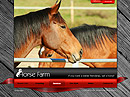 Item number: 300110387 Name: Horse farm Type: VideoAdmin flash templates