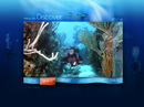 Diving club Flash Video Gallery Template